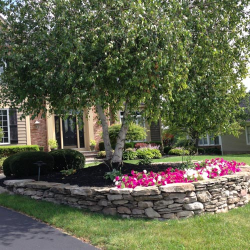 Rochester Landscapers